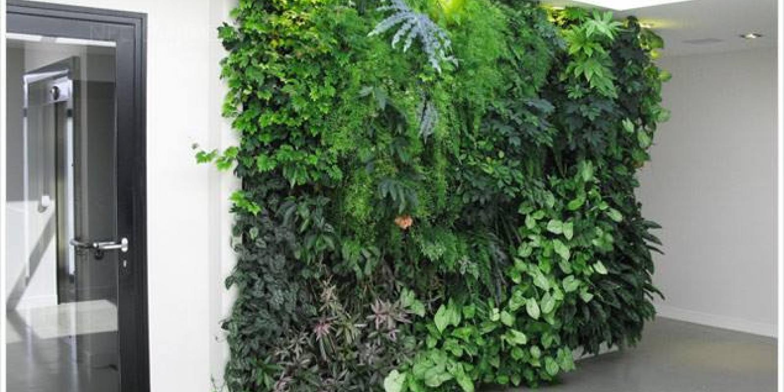 Mur Végétal Extérieur Palette eco-mur vegetalise | ecokay.fr
